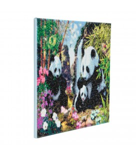 Crystal art panda met fram 40 x50 cm