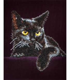 Midnight Cat Diamond Dotz: 28x36 cm