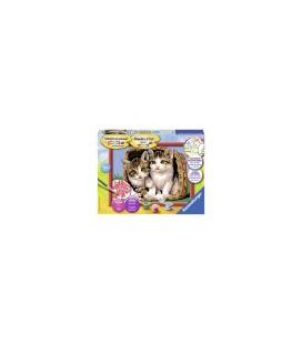 Katjes in mand Schilderen op nummer (286140)
