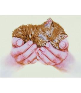 Precious Kitten Diamond Dotz: 52x40 cm (DD7.011) diamond painting