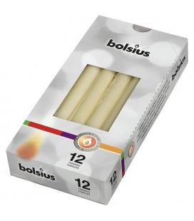 Bolsius Gotische kaars 245/24 doos a 12 stuks ivoor