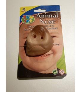 varkens neus