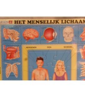 Larsen puzzel - Het menselijk lichaam