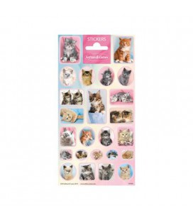 Stickers schattige katjes poes